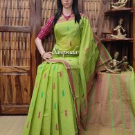 Amolika - Kanchi Cotton Saree