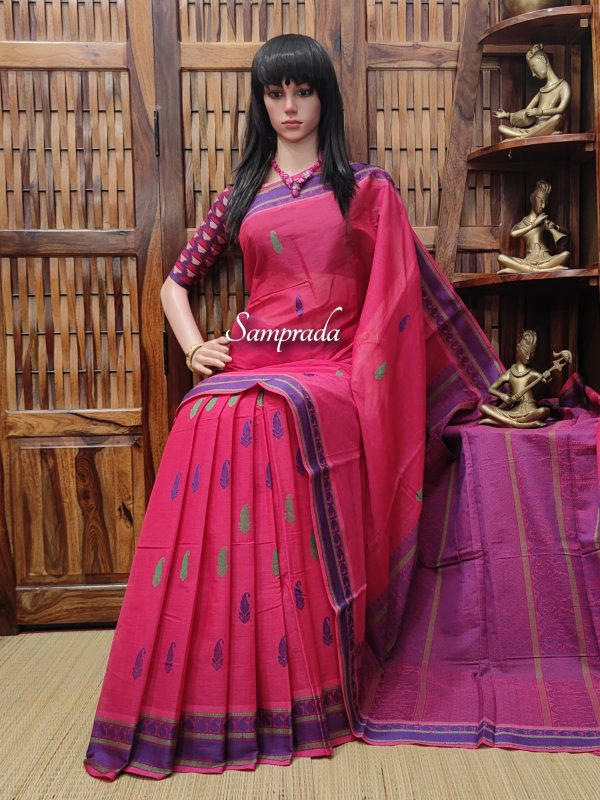 Anabhra - Kanchi Cotton Saree