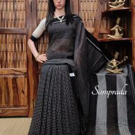 Ragavinodini - Patteda Cotton Saree