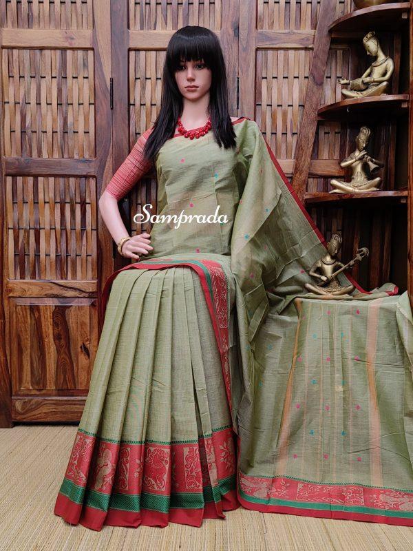 Sangrama - South Cotton Saree