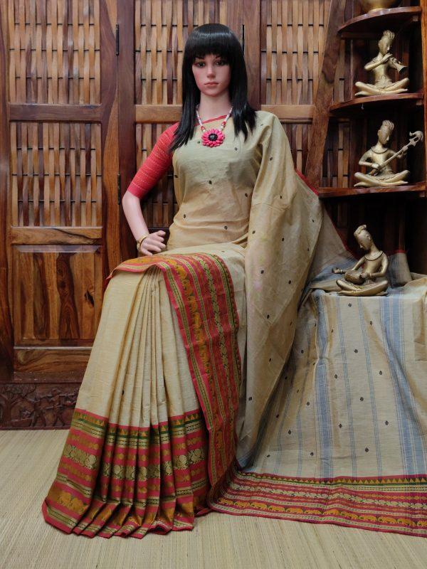 Sarvaka - South Cotton Saree
