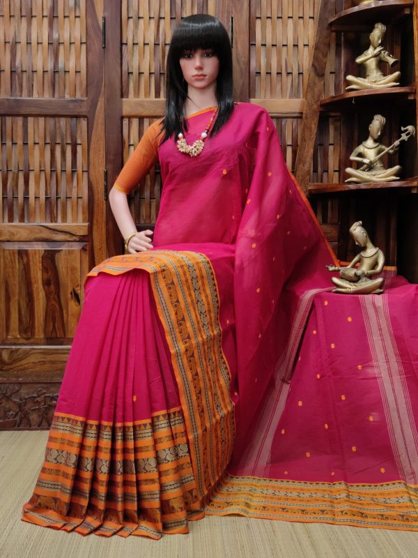 Sarvangi - South Cotton Saree
