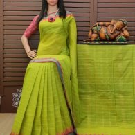 Shashikala - South Cotton Saree