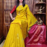 Sooktha - Venkatagiri Silk Saree