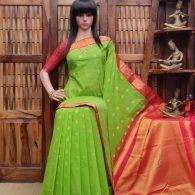 Bhaanu - Kuppadam Cotton Saree